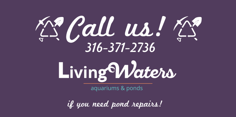 call-us-for-pond-repairs